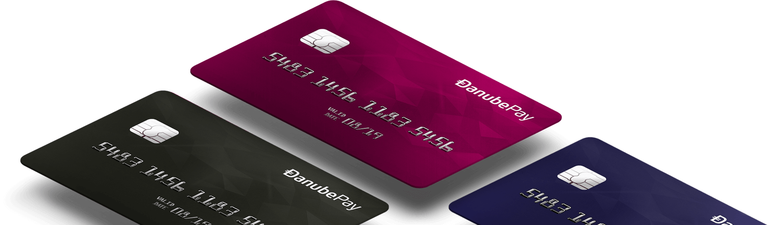 credit-cards-danubepay-v1